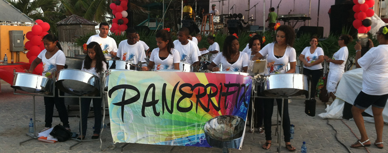 pannerifix steel band